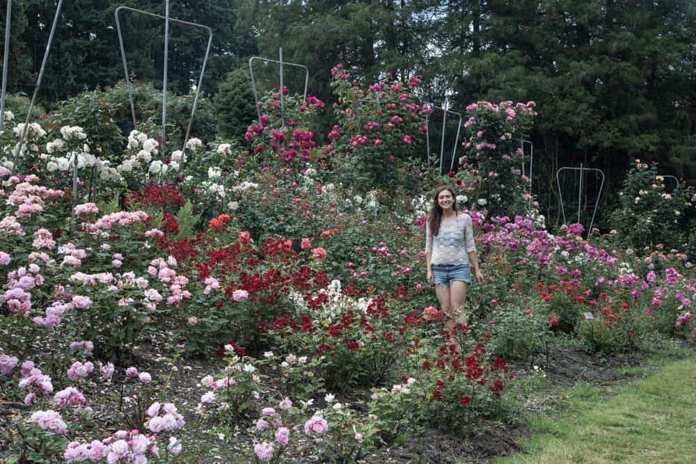 Girl standing in the Portland Rose Garden