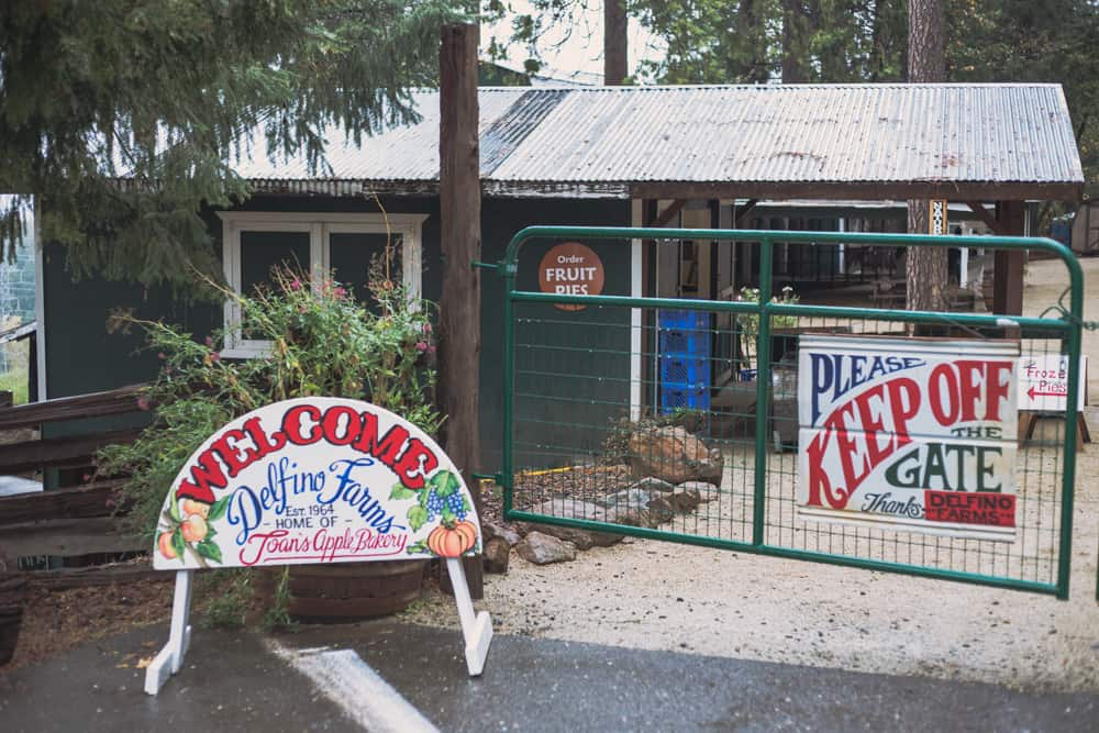 Delfino Farms at Apple Hill is the perfect fall destination in Placerville!