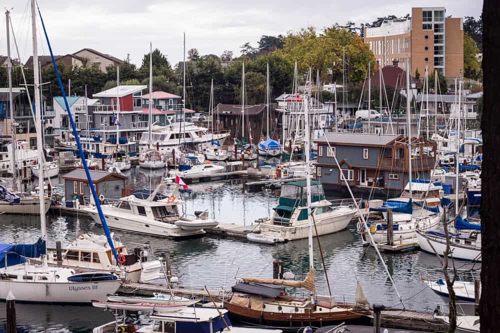 The harbor filled with boats in Victoria, Canada