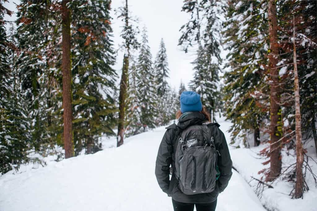 Snowshoeing in Badger Pass in Yosemite National Park in California