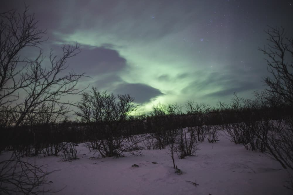 Northern Lights in snowy Abisko in Sweden in January