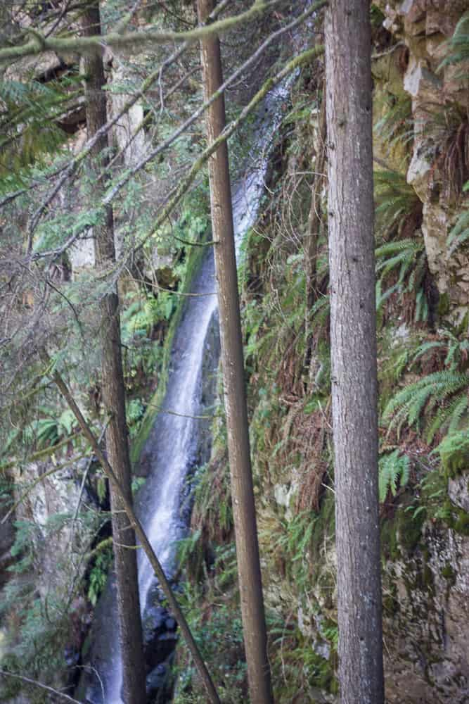 Waterfall at Lynn Canyon Park in Vancouver, Canada, BC