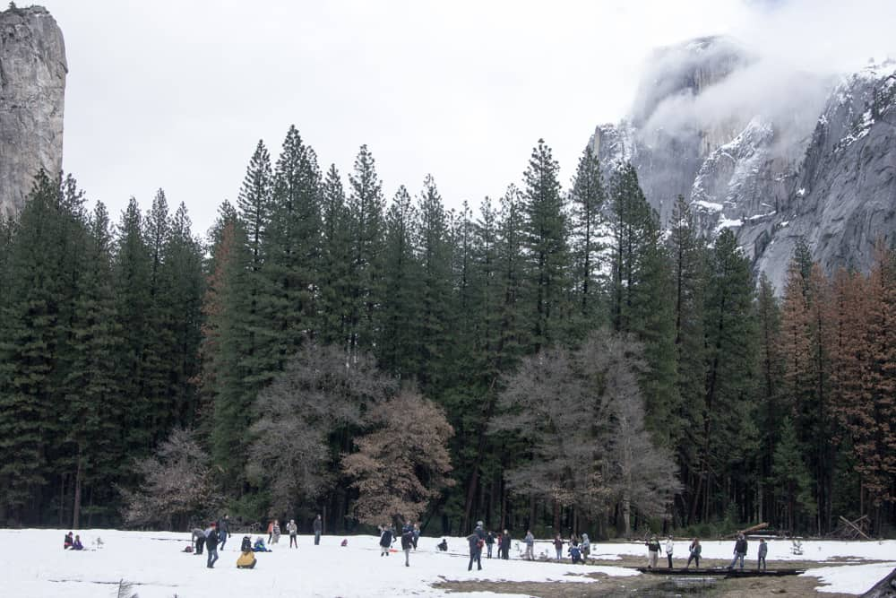 Playing in the snow in Yosemite National Park in California