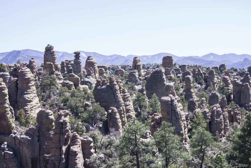 Chiricahua, Arizona