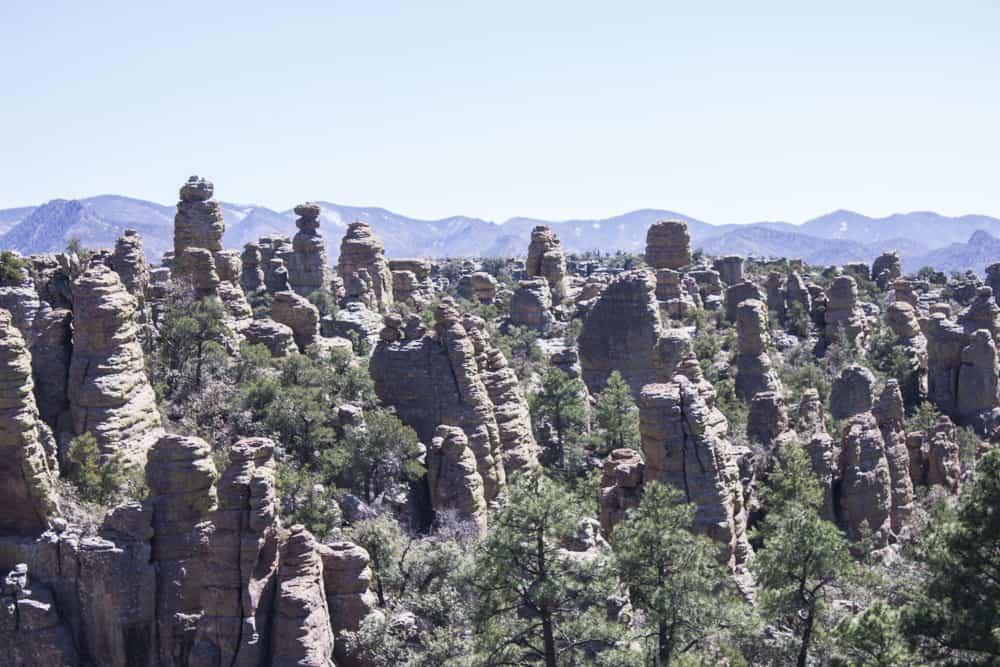 Chiricahua, Arizona