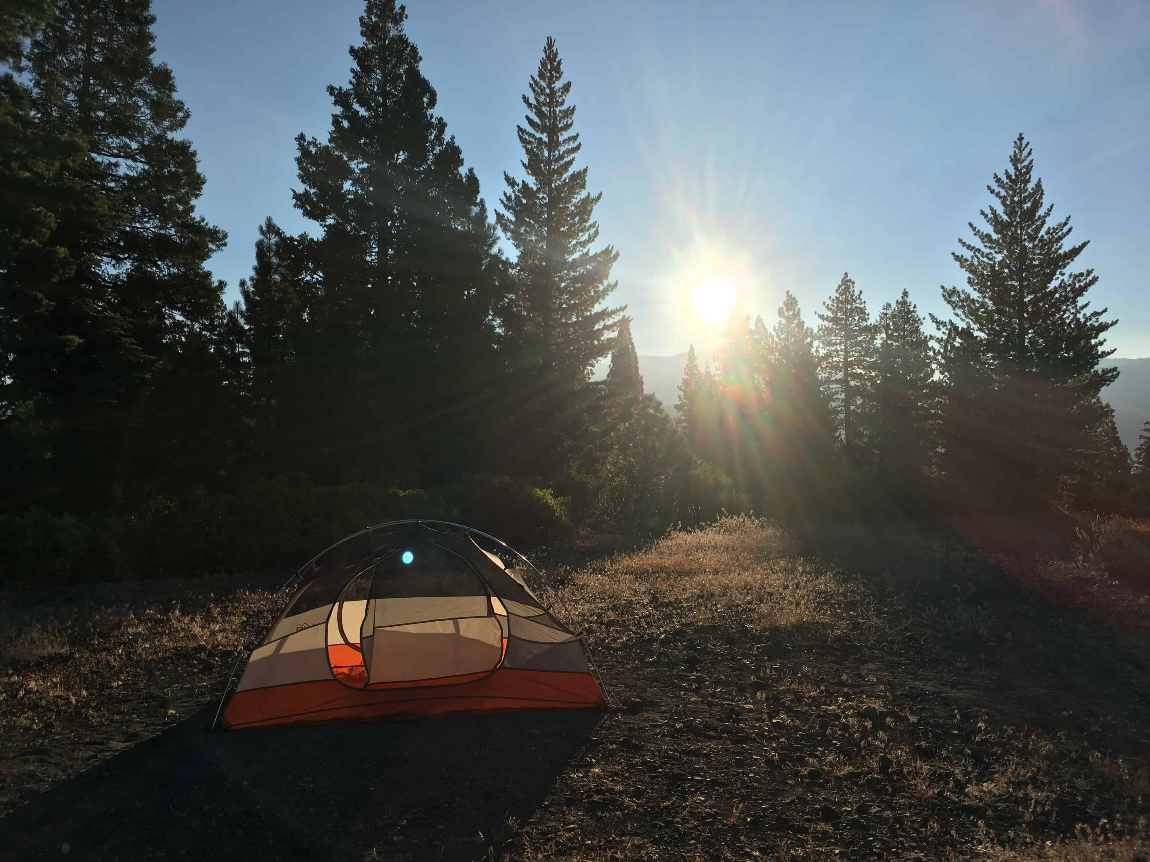 Tent on rocky terrain surrounded by pine trees in the Eastern Sierras near Mammoth, California