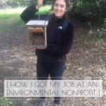 How I Got My Job at an Environmental Nonprofit