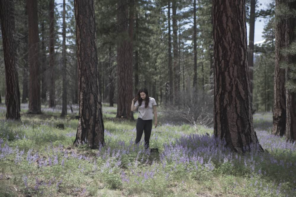 Frolicking through a field of lupine and large pine trees in Oregon