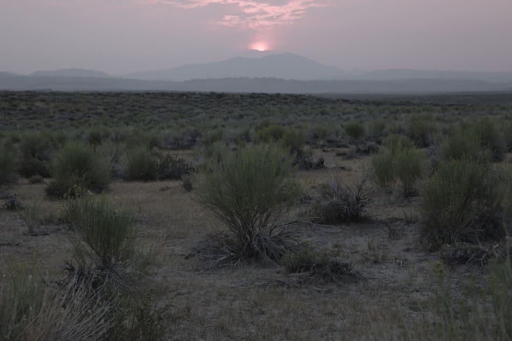 Sunset over desert landscape with desert shrubs in Mammoth in the Eastern Sierras in California