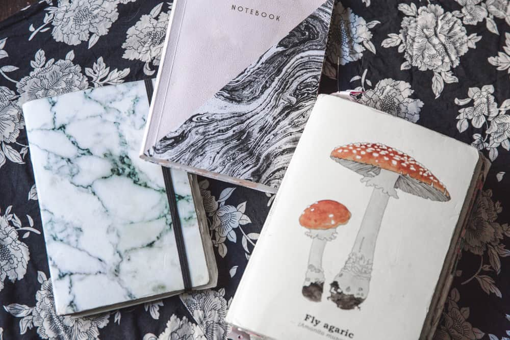 Marble and mushroom travel journals