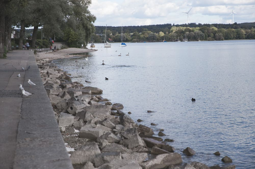 Starnberg Lake (Starnberger See) in Starnberg, Germany has lots of birds and walking paths