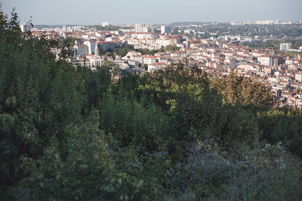 The view of Lyon from Fourvière Hill around sunset.