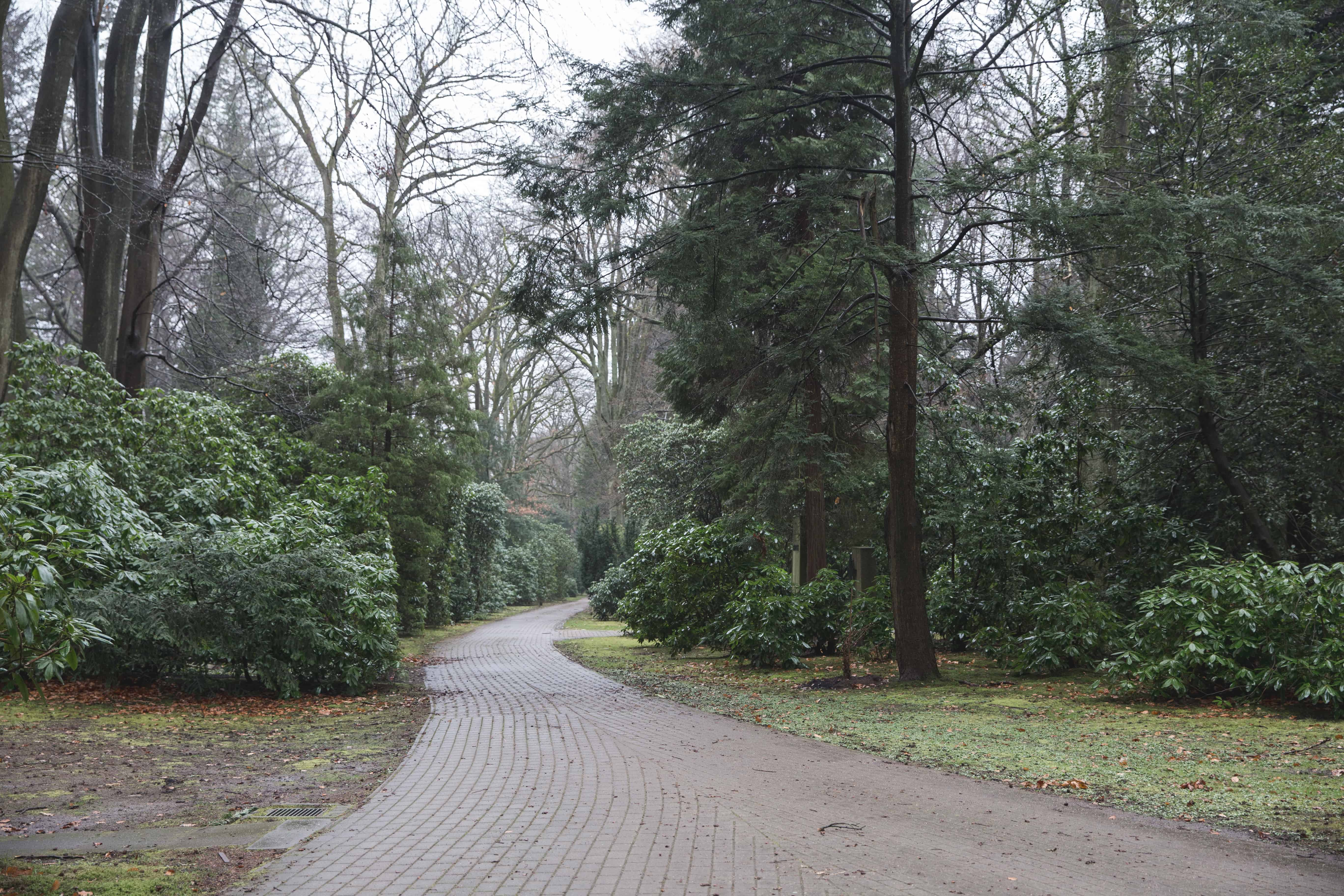 Pathway through the Ohlsdorf Cemetery on a rainy day in Hamburg, Germany