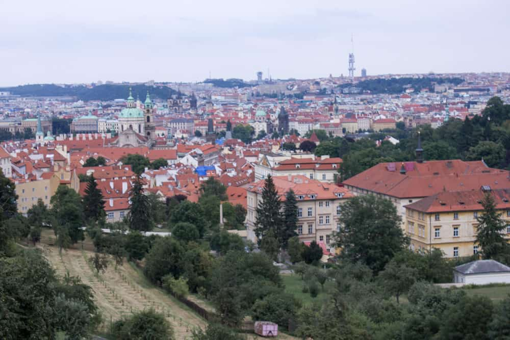 Overlooking the city of Prague with lots of orange rooftops and trees