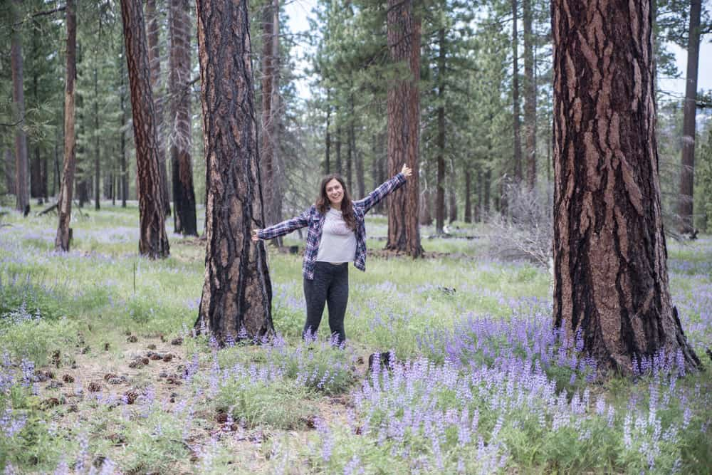 Girl standing in a field of lupine and pine trees