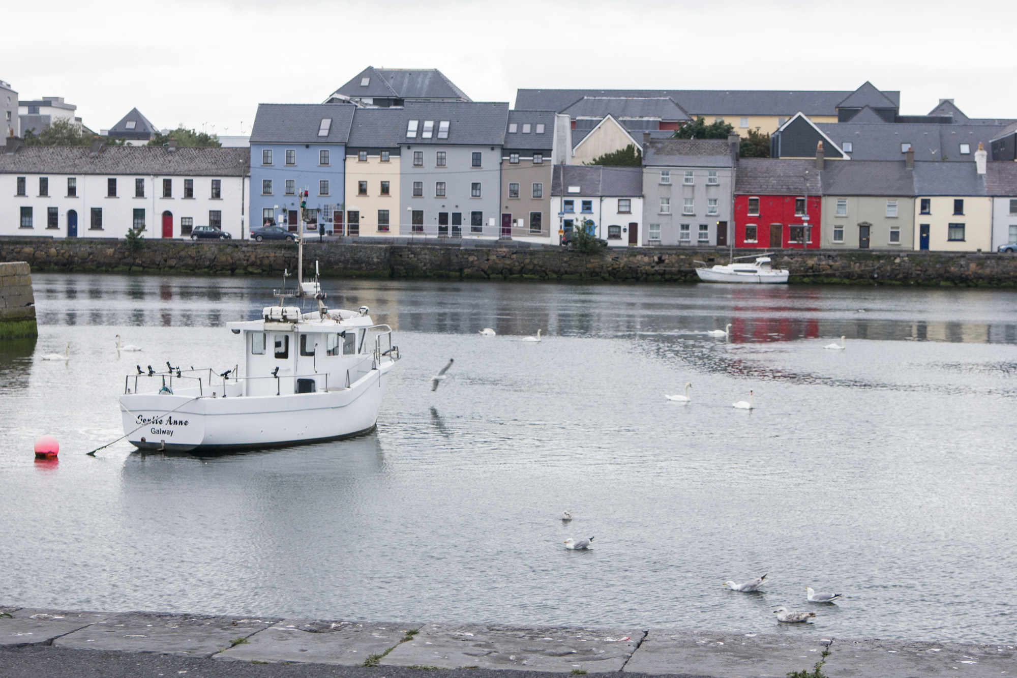Salthill Promenade Walk has a view of colorful houses and a boat in Galway, Ireland