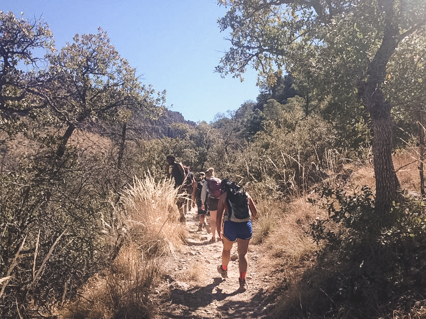 Several conservation corps members walking on a trail in the desert