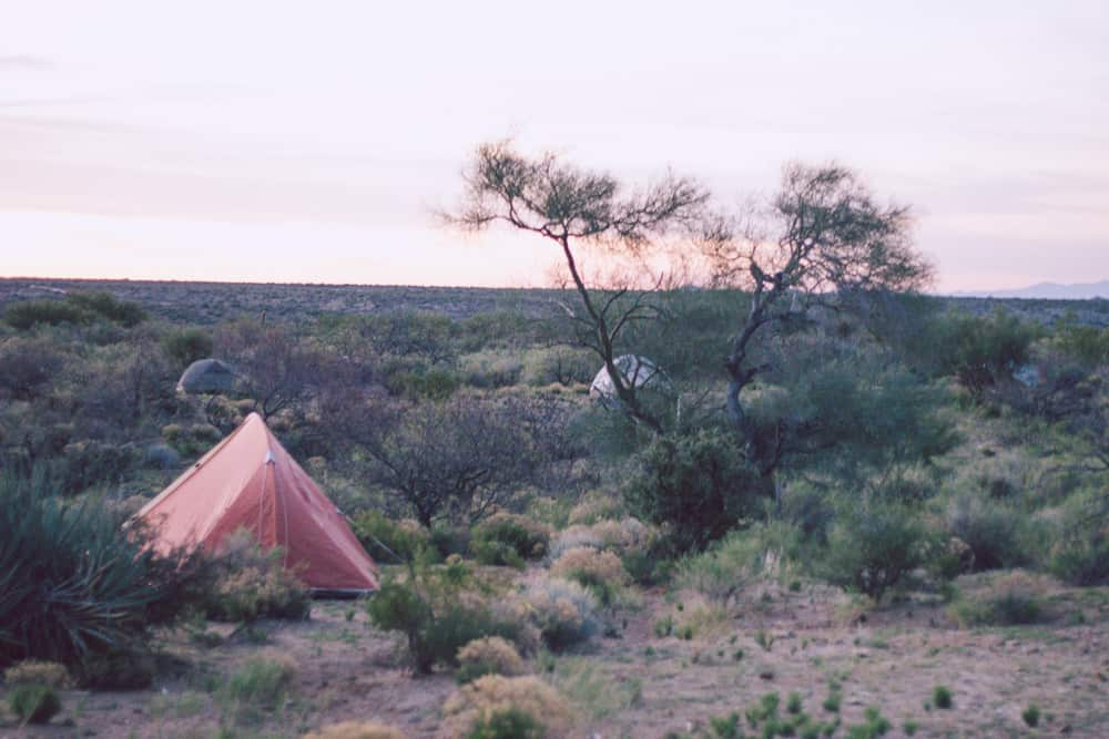 Sunrise and an orange tent in desert shrubs in Arizona in the conservation corps