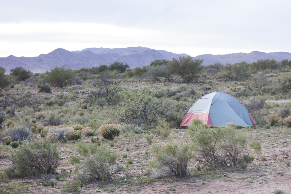 Tent in the Desert in Arizona