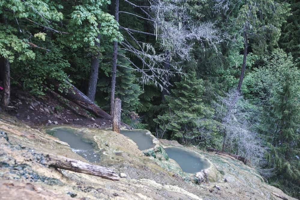 Umpqua Hot Springs in Oregon is surrounded by tall trees