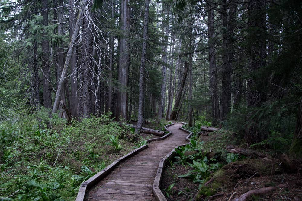 Pathway in Mt Hood around Trillium Lake in Oregon