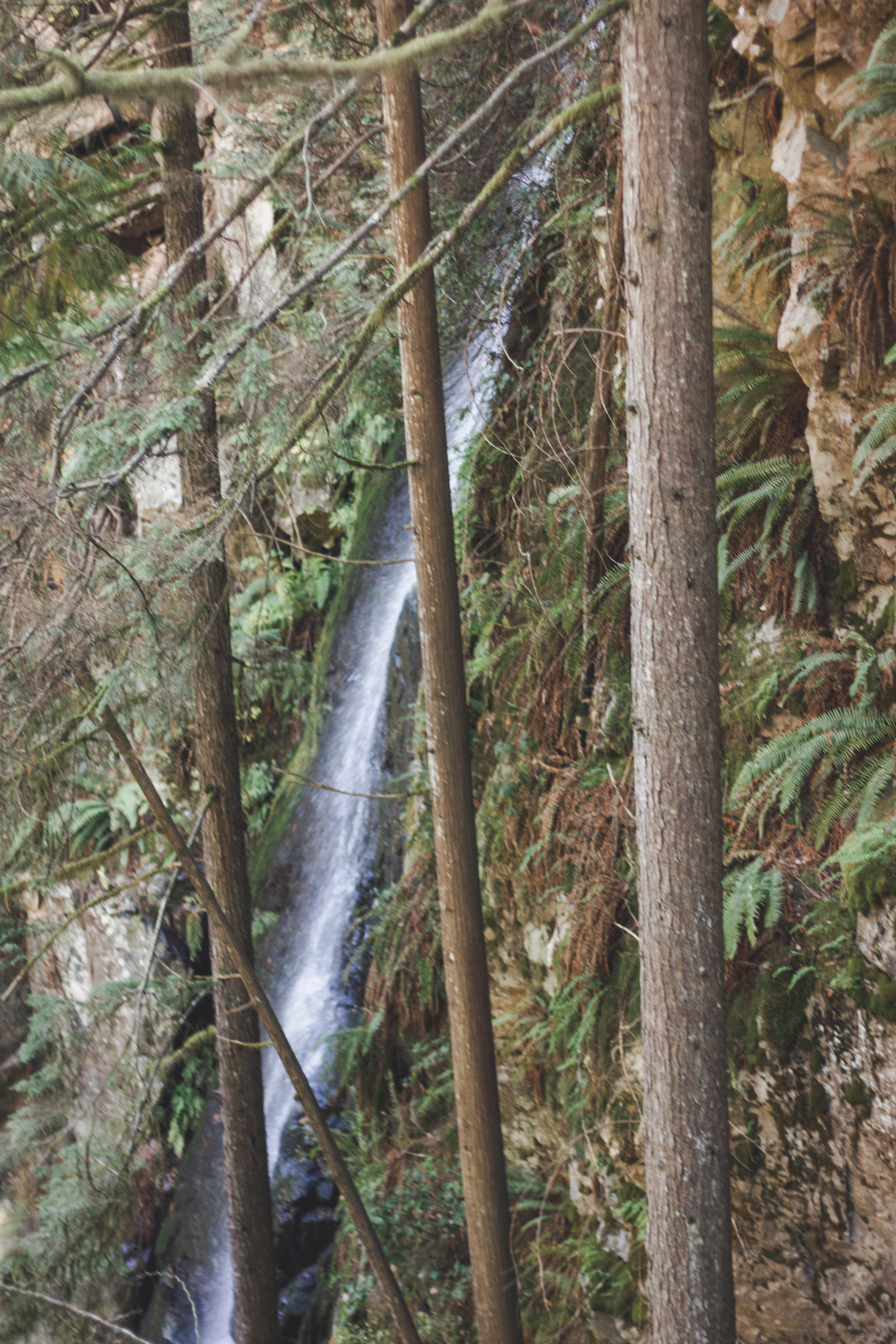 Waterfall in Lynn Canyon Park in Vancouver, Canada