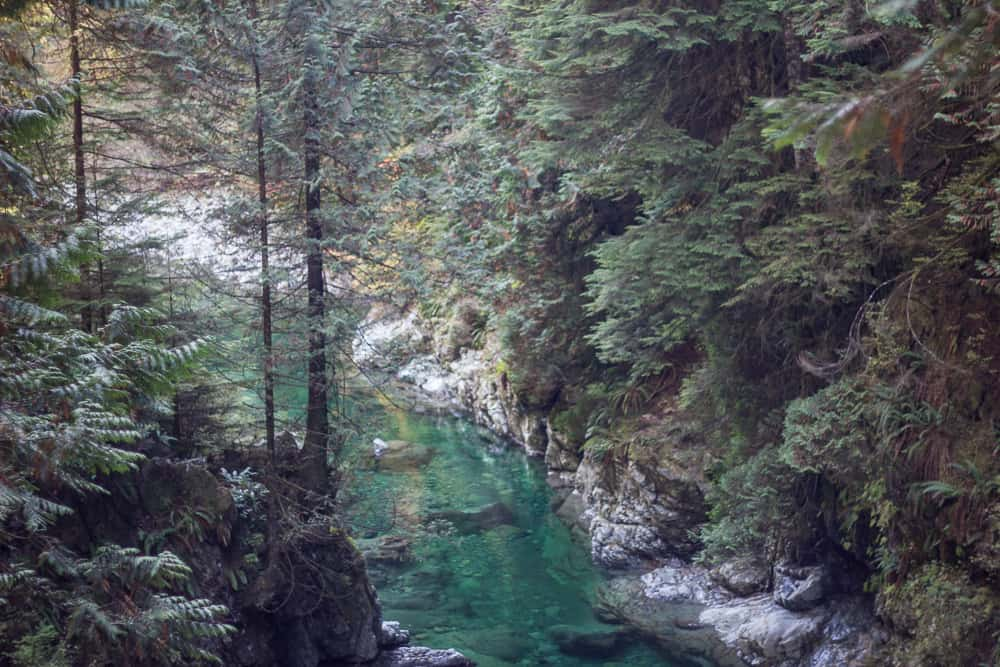 Lynn Canyon Park in Vancouver, Canada has lots of trees and turquoise water