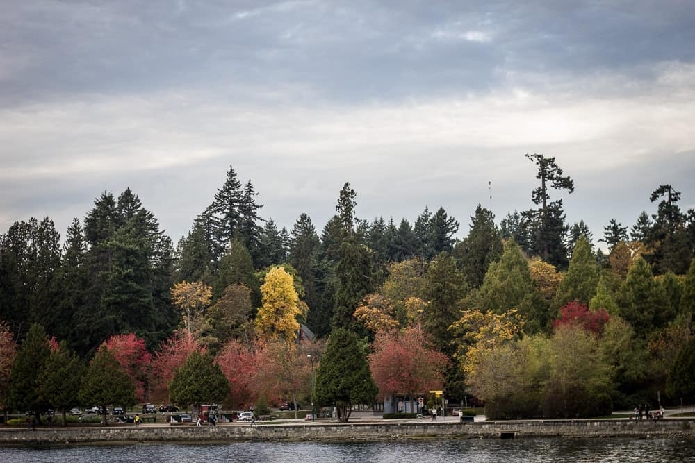 Fall foliage in Stanley Park in Vancouver, Canada, BC