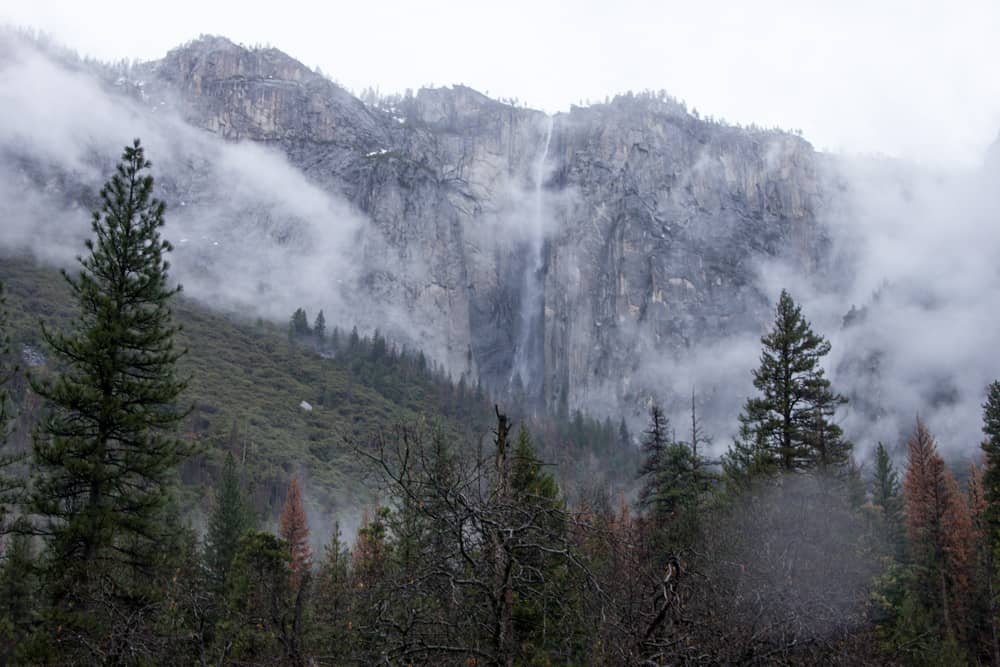 Yosemite Vally in Yosemite National Park on a foggy day