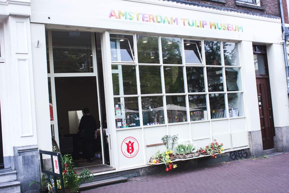 Tulip Museum in Amsterdam