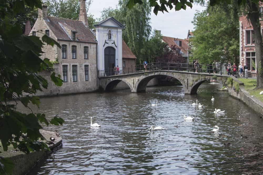 Bruges, Belgium has swans, a beautiful river, bridges, and brick houses