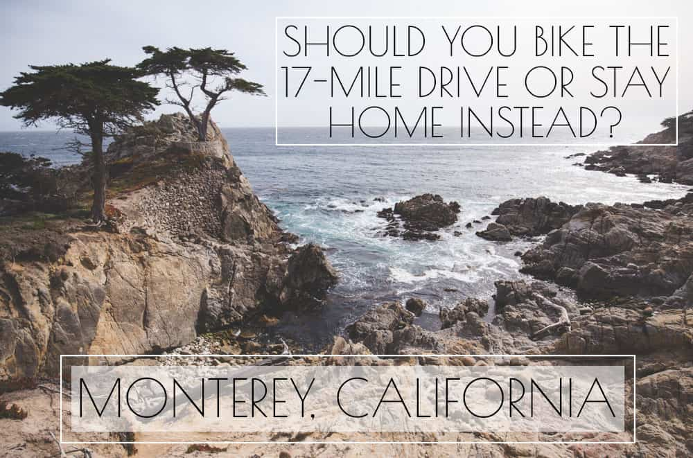 The Lone Cypress on the 17-Mile Drive in Monterey, California - Should You Bike the 17-Mile Drive?