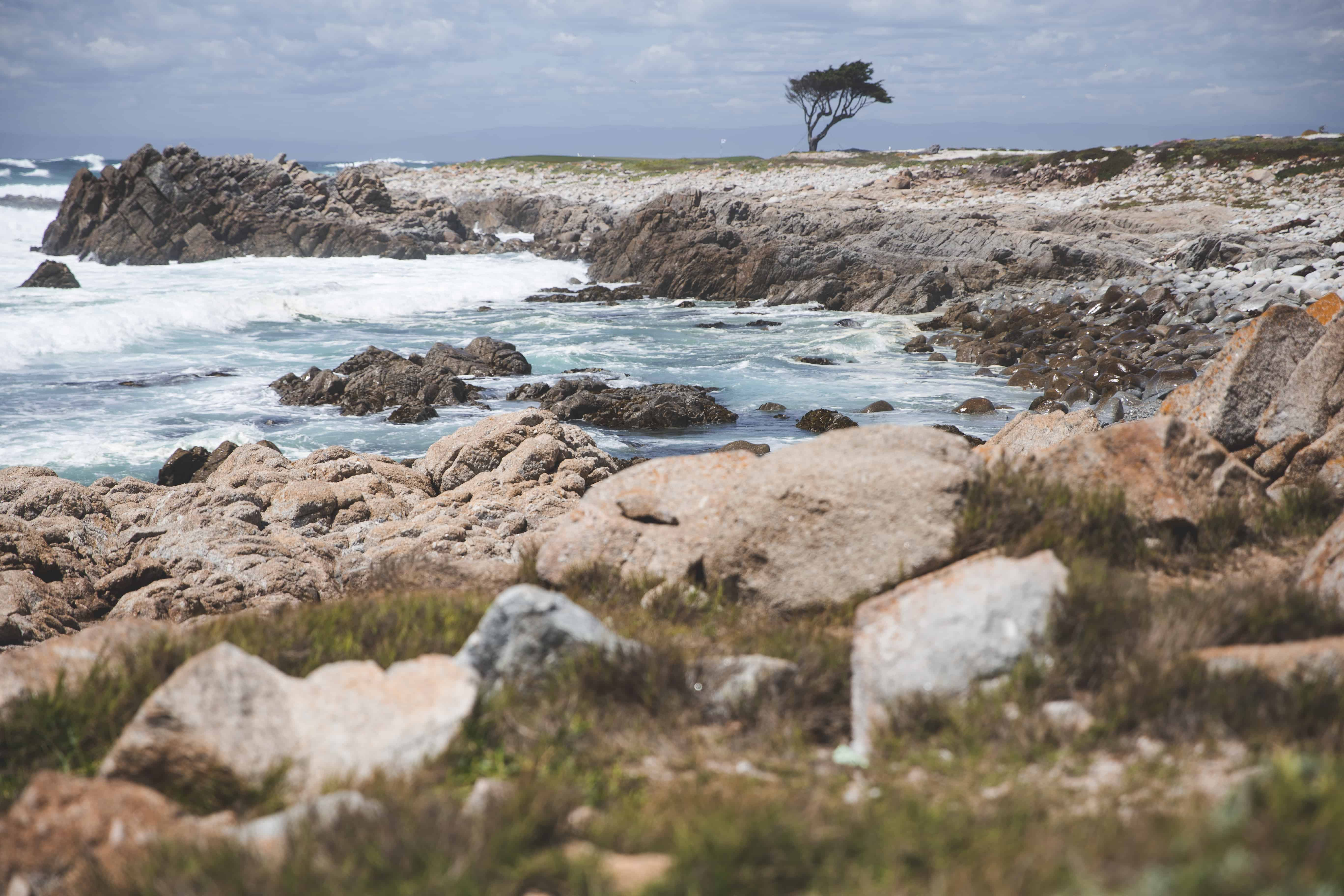 Scenery along the 17-Mile Drive near Monterey, California