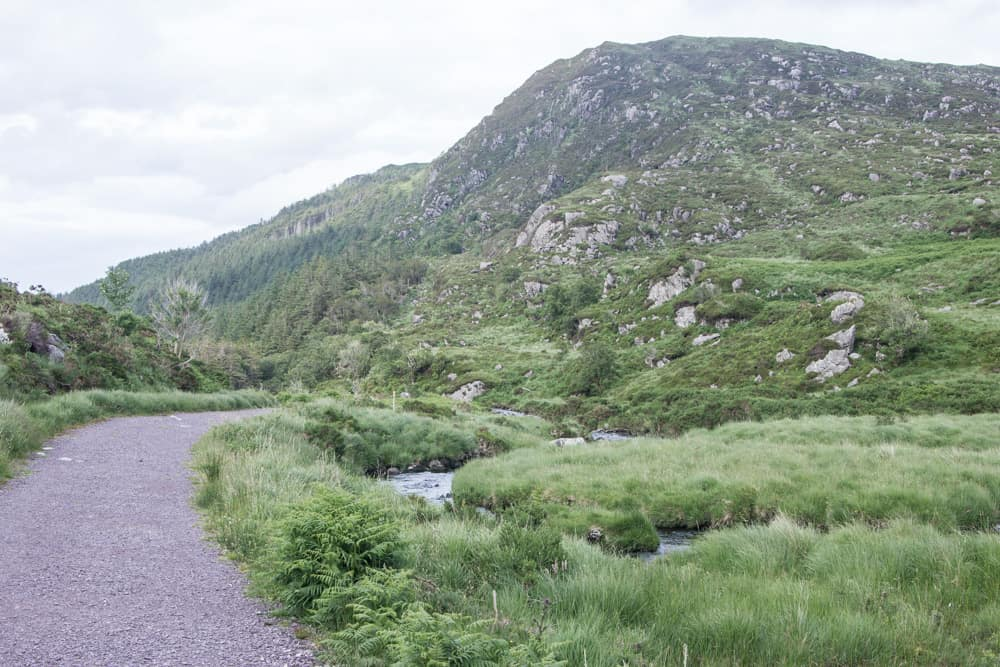 Pathway at the bottom of Torc Mountain in Killarney National Park