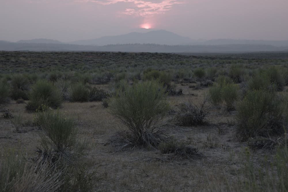 Sunset over desert landscape with desert shrubs in Mammoth in the Eastern Sierras in California