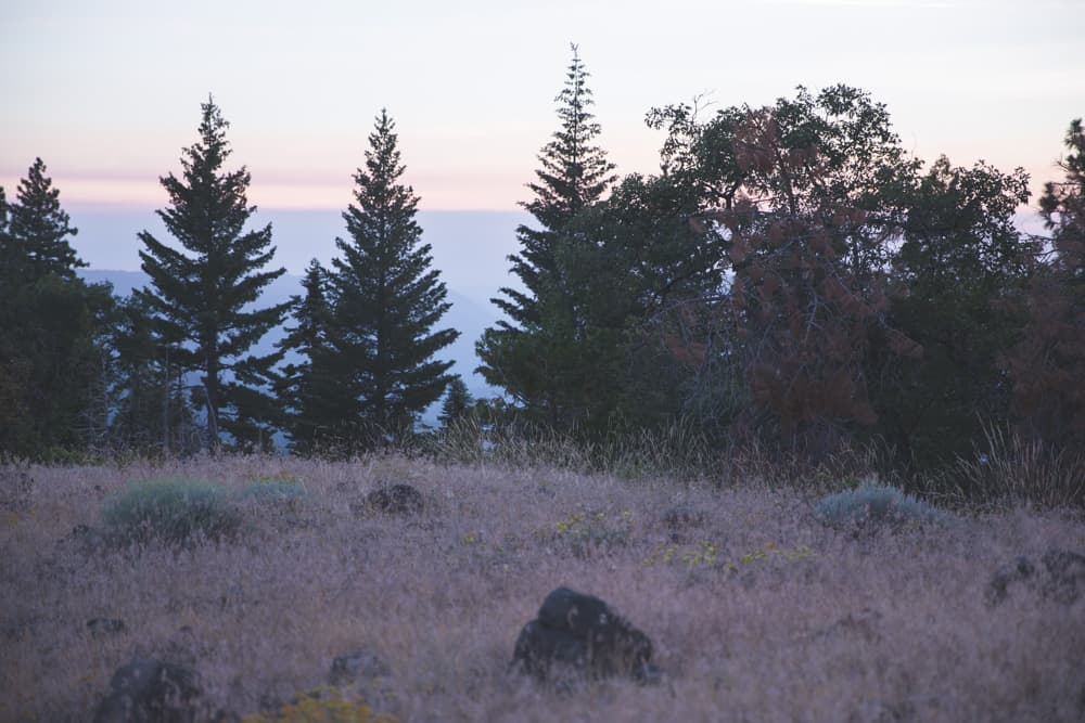 View from campsite at sunset on BLM land in the Eastern Sierras in California