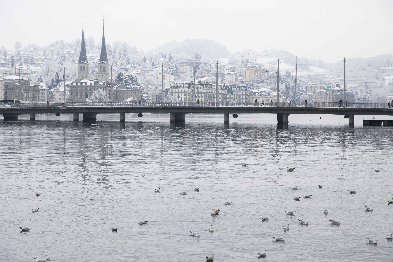 Lake Lucerne in February