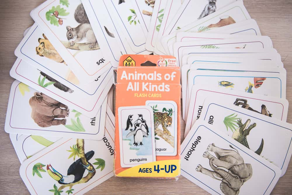 VIP Kid animal flashcards
