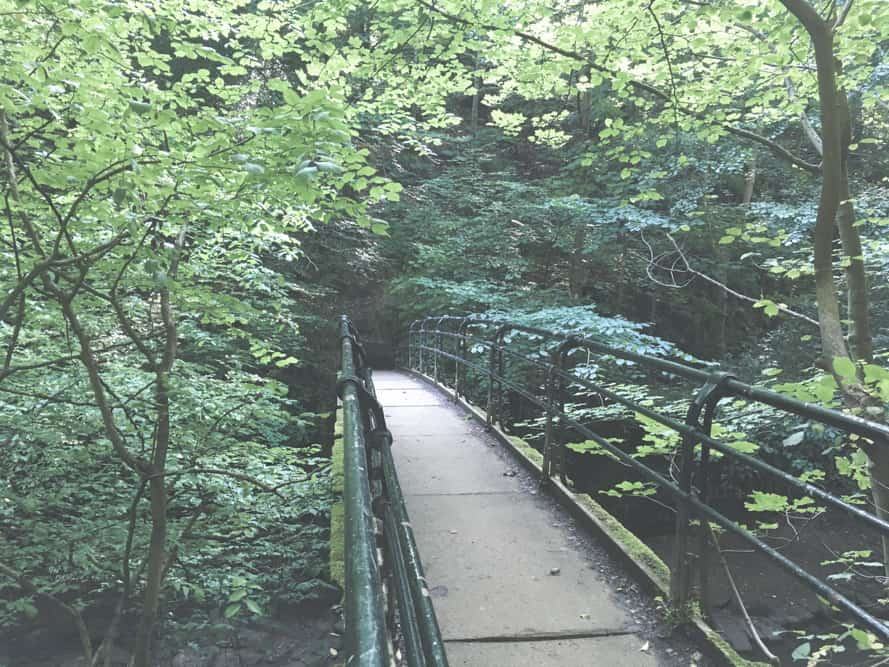 The Saltburn Woods are so pretty and green - walking or running through them was one of my favorite things to do in Saltburn-by-the-Sea, England