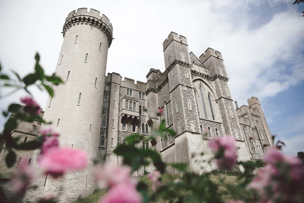 Arundel Castle in England with pink roses in the foreground