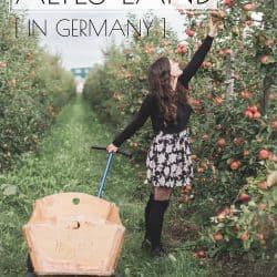 Apple Picking is More Fun in Germany (My Experience in Altes Land)