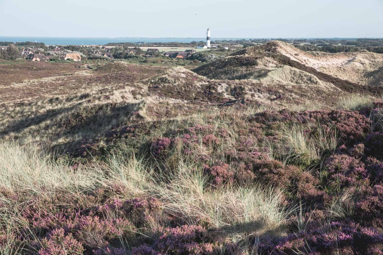 The Kampen Lighthouse from the Uwe Dune lookout on the island of Sylt in Germany. Sylt is one of the best day trips from Hamburg!