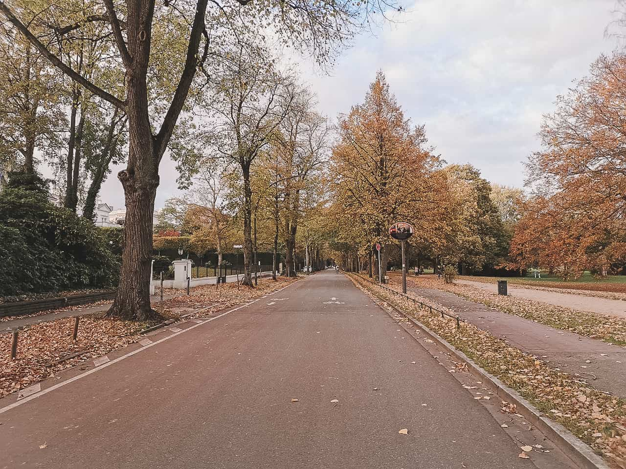 Fall in Hamburg along the Alster