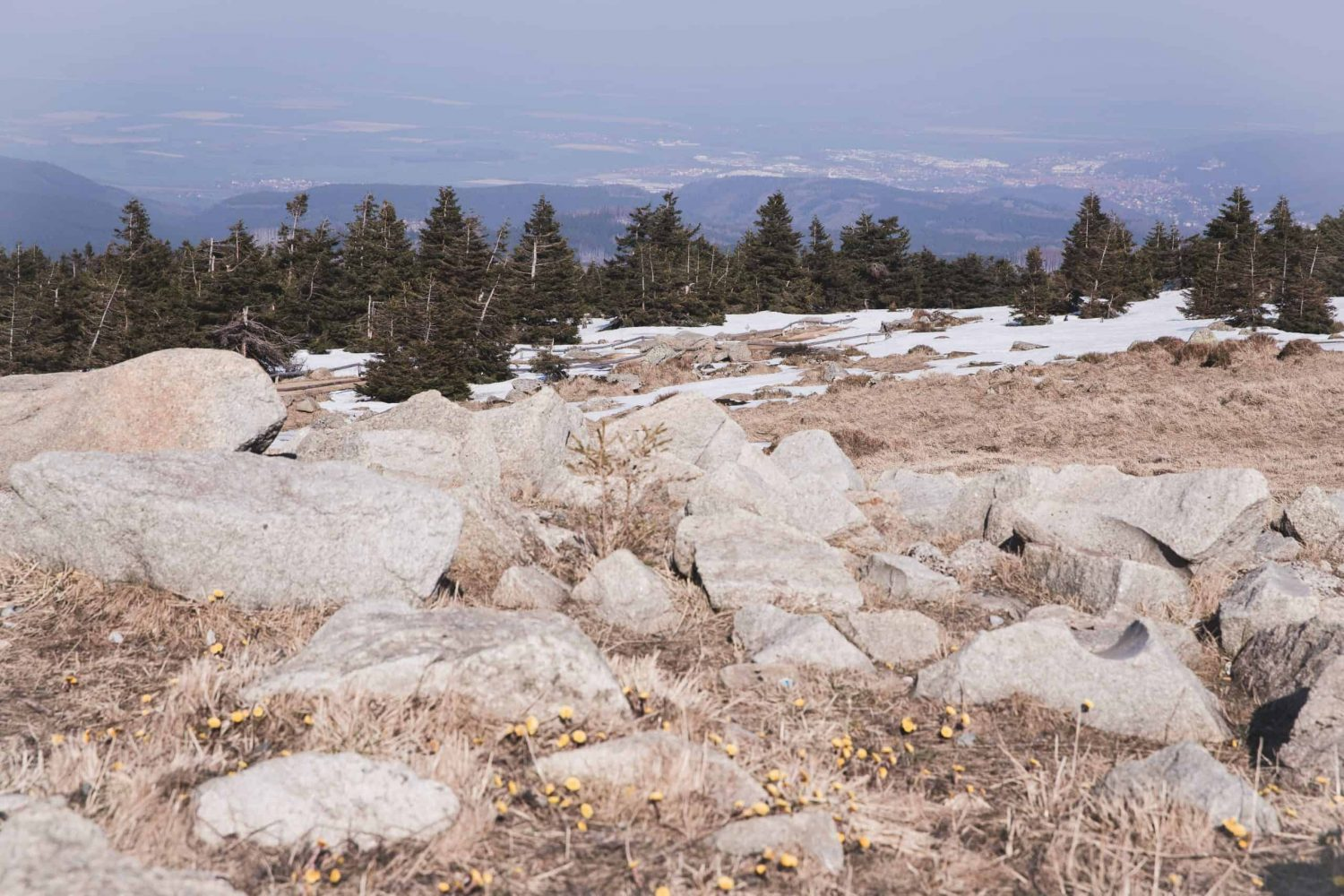 The view from the top of Brocken in the Harz Mountains in Harz National Park