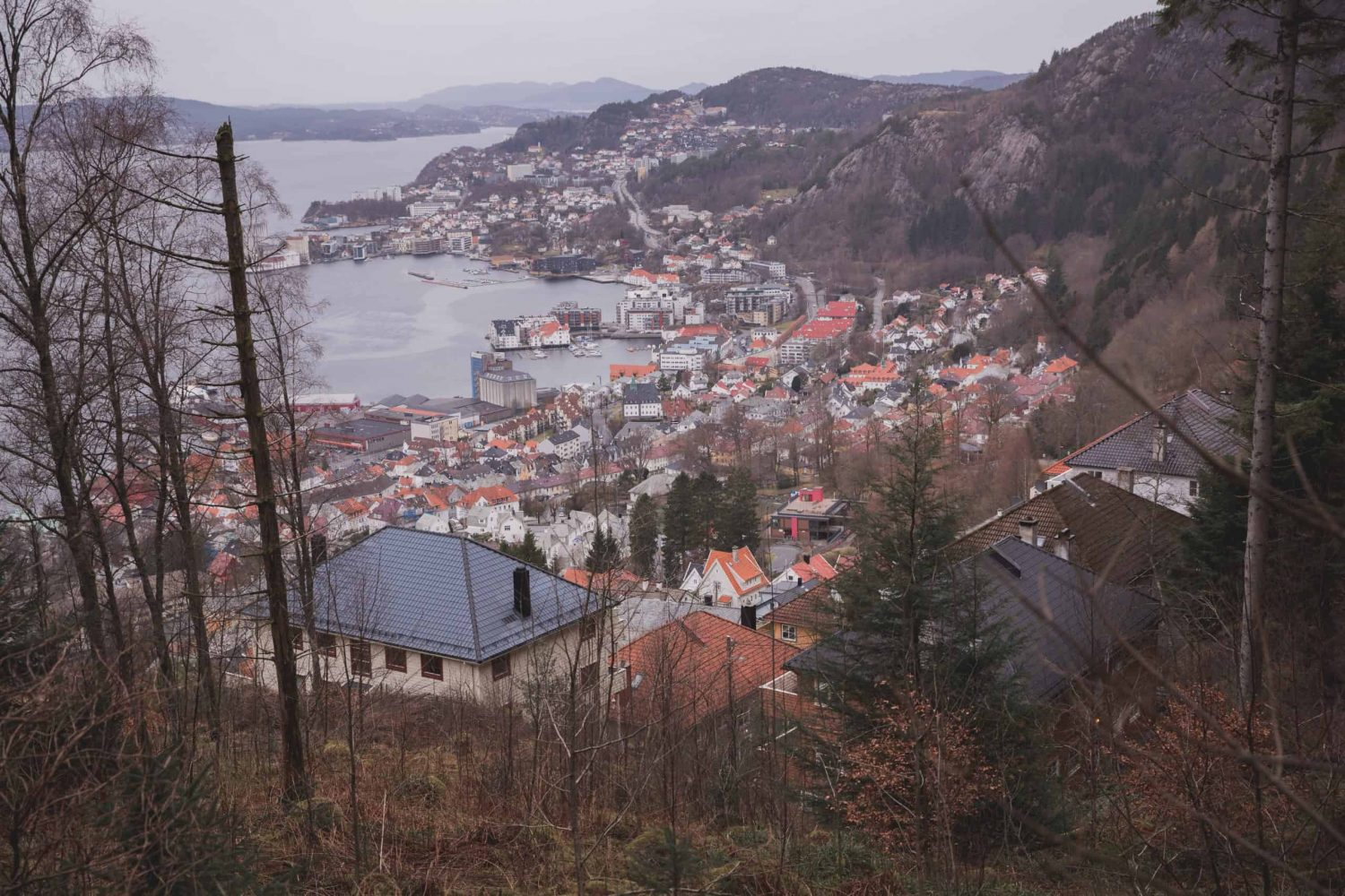 View of Bergen, Norway from the Fløyen hiking trail.