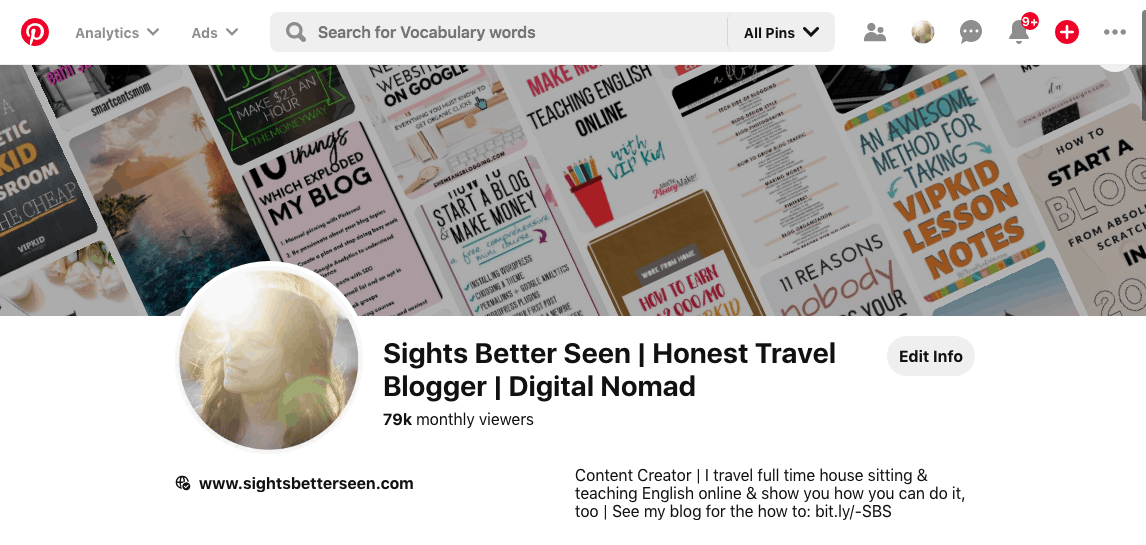 Pinterest page for Sights Better Seen