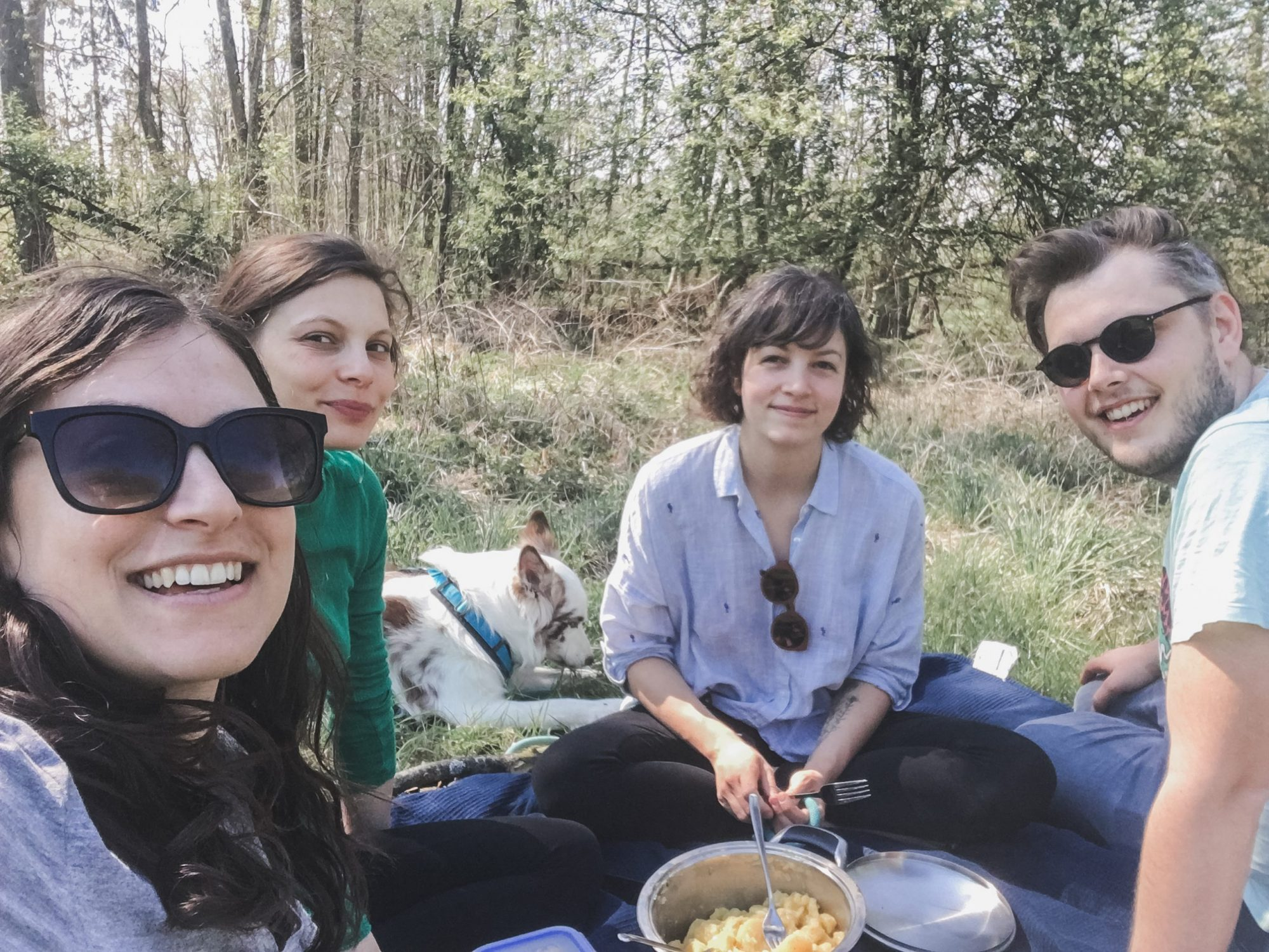 A Picnic in the Austrian Countryside