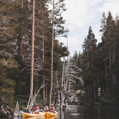 3 Yellow Kayaks With Kayakers in Lake Tahoe in the water next to pine trees