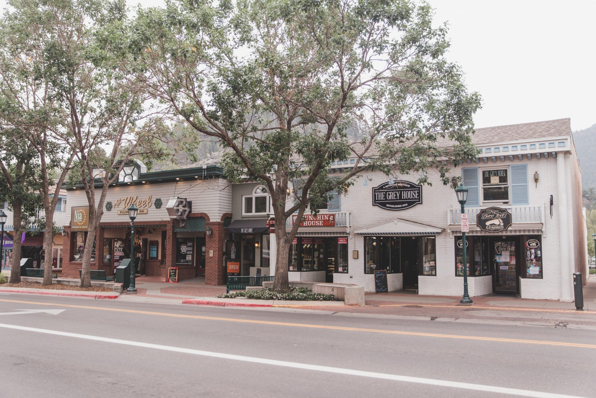 Tree-lined street with stores in Estes Park, Colorado