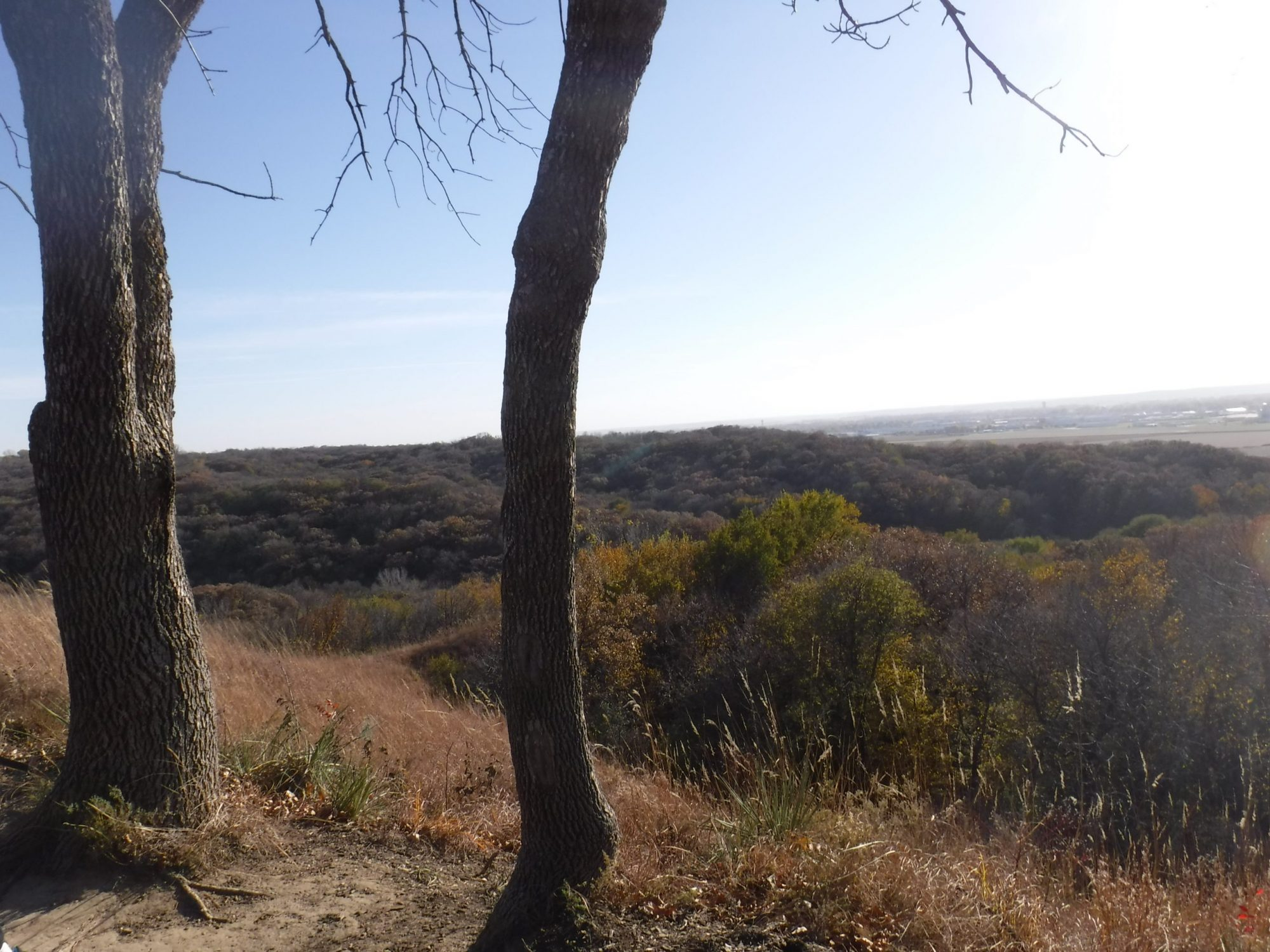 Loess Hills Scenic Byway in Fall
